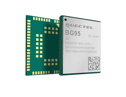 BG95-M3LA-64-SGNS